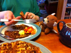 Bear eats waffles
