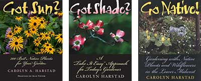 Carolyn-Harstad-Books