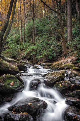 Photo from 'The Great Smoky Mountains' by Lee Mandrell and DeeDee Niederhouse-Mandrell